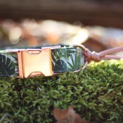 Jungle collar